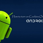 How to turn on Cookies on Android Smartphone