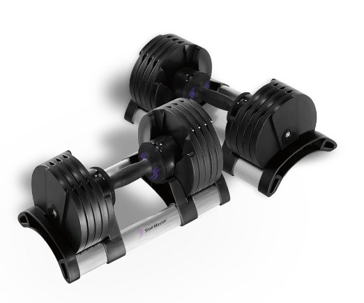 StairMaster Pair of Twist Lock Adjustable Dumbbells