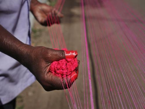 Why kite flying festival (Makar Sankranti) must be banned in India
