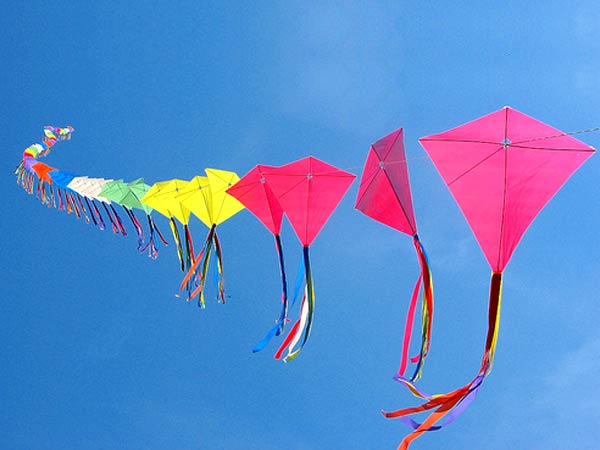 Why is Makar Sankranti celebrated in India