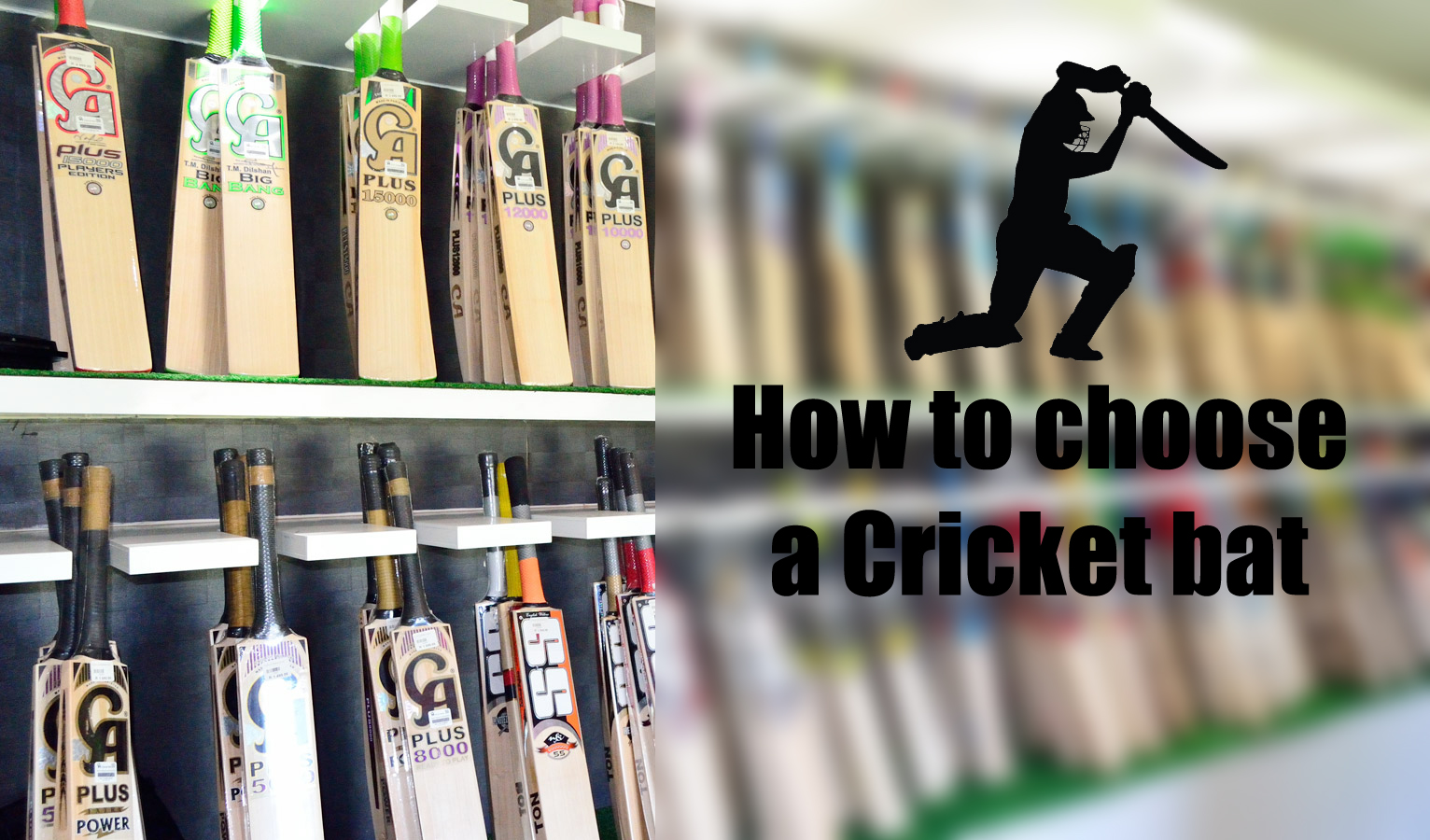 How-to-choose-a-cricket-bat